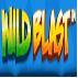wild blast